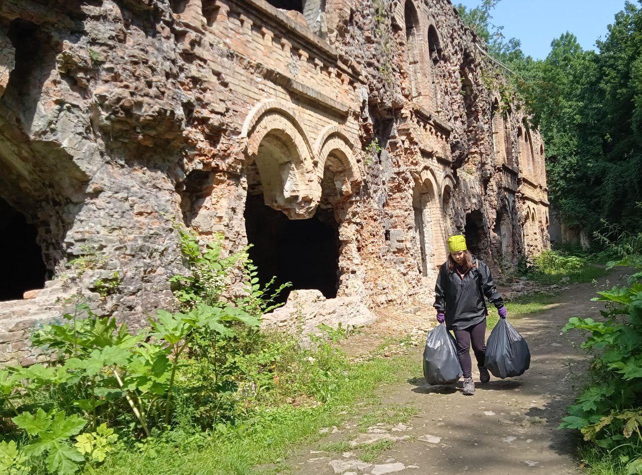 Толока в Тараканівському форті 2.0